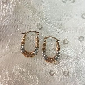 10K Multi-Gold Earrings